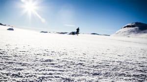 Hardangervidda levererar Foto:David Erixon